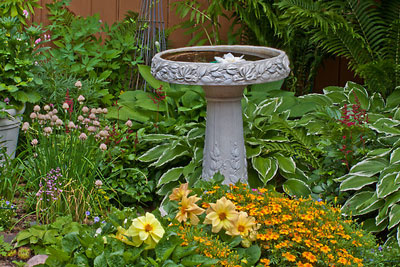 Statuary and Bird Baths
