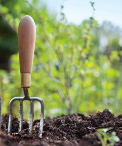 Bagged Soils and Amendments